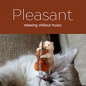 Pleasant Music 2017 by Various Artists