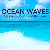 Ocean Waves - Calming Sounds of the Sea, Nature Sounds for Deep Sleep, Brain Stimulation, Concentration for Study, Meditation, Yoga, Massage & Relaxation by Nature Sounds Nature Music