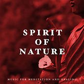 Spirit of Nature - Ideal Music for Meditation and Healing by Various Artists