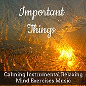 Important Things - Calming Instrumental Relaxing Mind Exercises Music for Happy Christmas Silent Night Stay Together with Nature Sweet Meditative Sounds by Santa Clause
