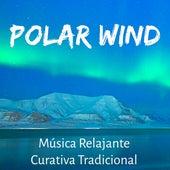 Polar Wind - Música Relajante Curativa Tradicional para Copos de Nieve Regalos de Navidad Mantener la Calma con Sonidos Naturales Instrumentales Binaurales by Various Artists