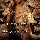 Play & Download Leones de Reggaeton by Various Artists | Napster