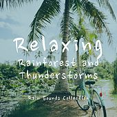Relaxing Rainforest and Thunderstorms by Rain Sounds Collection
