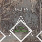 Into The Forest von Chet Atkins