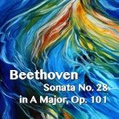 Beethoven Sonata No. 28 in A Major, Op. 101 by Joseph Alenin