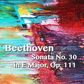 Beethoven Sonata No. 30 in E Major, Op. 111 by Joseph Alenin