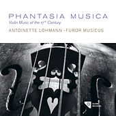 Play & Download Phantasia Musica by Furor Musicus | Napster