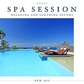 Play & Download Spa Session: A Beautiful Collection of Relaxing and Soothing Sounds to take you Away from Stress and Anxiety and Place you amongst the Peace and Tranquillity of Nature by Various Artists | Napster