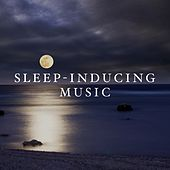 Sleep-Inducing Music: Stunning Natural Sounds that Relax and Calm us. by Various Artists