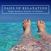 Oasis of Relaxation - Listen to High Quality Sounds of Nature with Relaxing Music by Various Artists