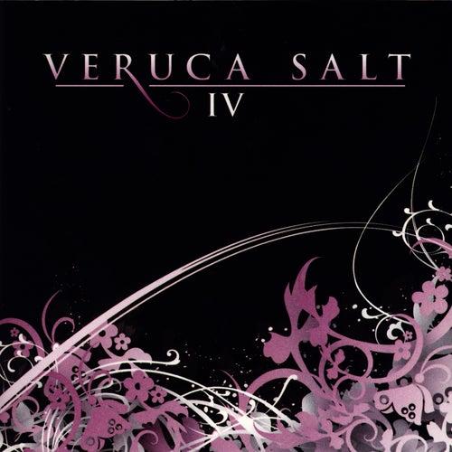 Iv by Veruca Salt