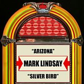 Arizona / Silver Bird by Mark Lindsay