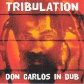 Tribulation Don Carlos In Dub by Don Carlos