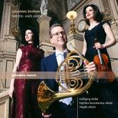 Play & Download Brahms: Horn Trio & Violin Sonatas by Bojidara Kouzmanova-Vladar   Napster