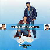 Play & Download O Solteirão, Vol. 2 by Joel | Napster
