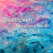 Beethoven Symphony No. 5 in C Minor, Op. 67 by The St Petra Russian Symphony Orchestra