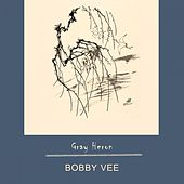 Gray Heron by Bobby Vee