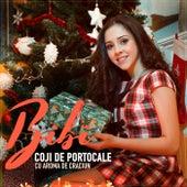 Play & Download Coji de portocale (Cu aroma de Craciun) by Bibi | Napster