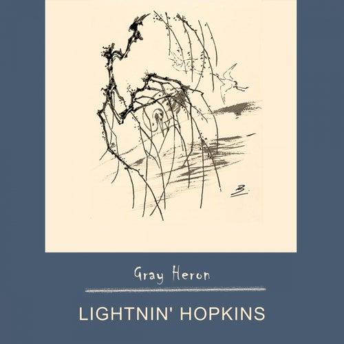 Gray Heron by Lightnin' Hopkins