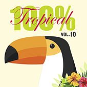 Play & Download 100% Tropical, Vol. 10 by Various Artists | Napster