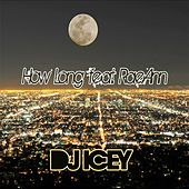 How Long (feat. Raeann) von DJ Icey