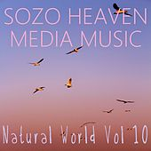 Natural World, Vol. 10 by Sozo Heaven