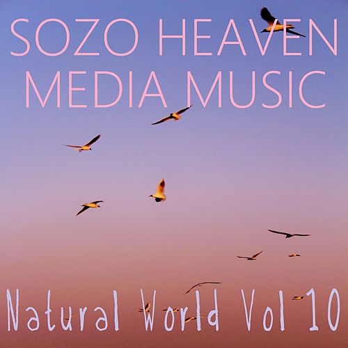 Play & Download Natural World, Vol. 10 by Sozo Heaven | Napster