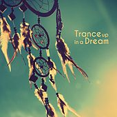 Trance up in a Dream von Various Artists