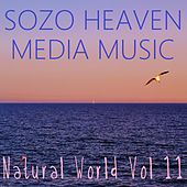 Natural World, Vol. 11 by Sozo Heaven