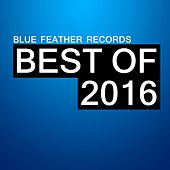Blue Feather Records Best of 2016 by Various Artists