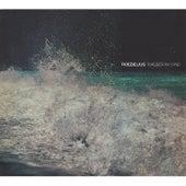 Play & Download Wasser im Wind by Roedelius | Napster