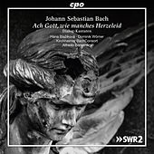 Play & Download J.S. Bach: Dialog-Kantaten by Various Artists   Napster