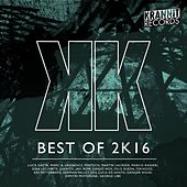 Best of 2k16 by Various Artists