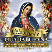 Play & Download Celebracion Guadalupana by Various Artists | Napster