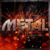 Metal von Various Artists