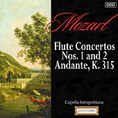 Mozart: Flute Concertos Nos. 1 and 2 - Andante, K. 315 by Various Artists