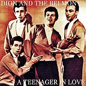 A Teenager in Love by Dion