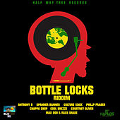 Play & Download Bottle Locks Riddim by Various Artists | Napster