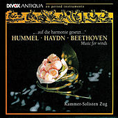 Play & Download Hummel: Parthia in E-Flat Major / Haydn, J.: Symphony No. 70 / Beethoven: Sextet in E-Flat Major by Kammersolisten Zug | Napster