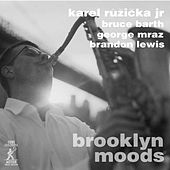 Play & Download Brooklyn Moods by Various Artists | Napster