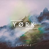 Play & Download Luz Vital by York | Napster