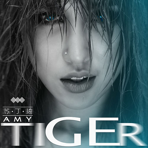 Tiger by Amy