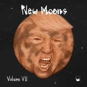 New Moons Vol. VII by Various Artists