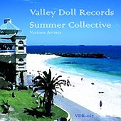 Valley Doll Records Summer Collective by Various Artists