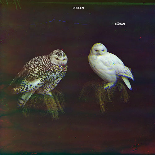 Häxan by Dungen