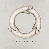 Play & Download Vicious Cycle by Afterlife | Napster