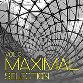Maximal Selection, Vol. 3 - Minimal Tunes by Various Artists