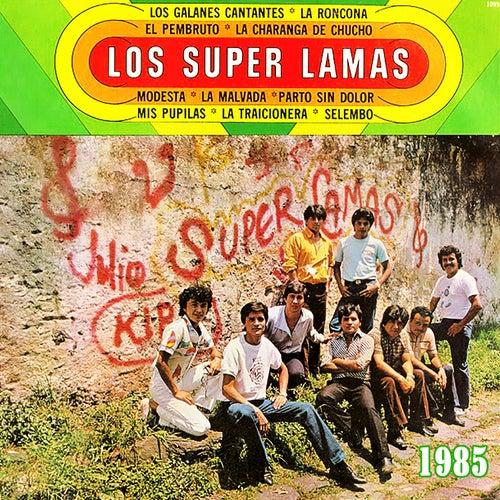 Los Galanes Cantantes by Super Lamas