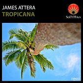 Play & Download Tropicana by James Attera | Napster