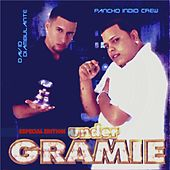 Under Gramie by Various Artists